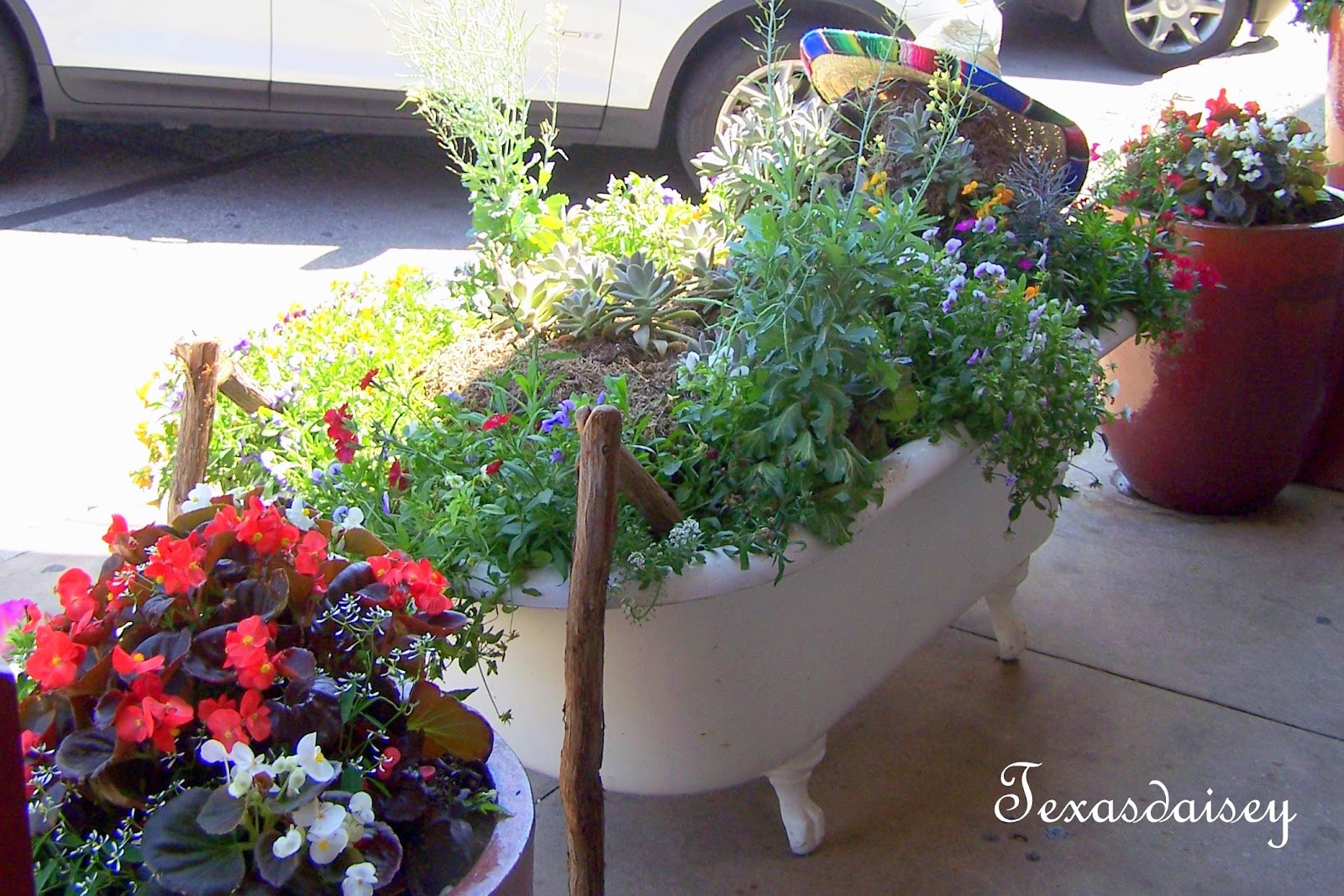 Texasdaisey creations container garden ideas for Garden planter ideas