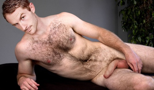 Question removed Young very hairy chested men congratulate
