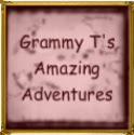 grammy t's amazing adventures