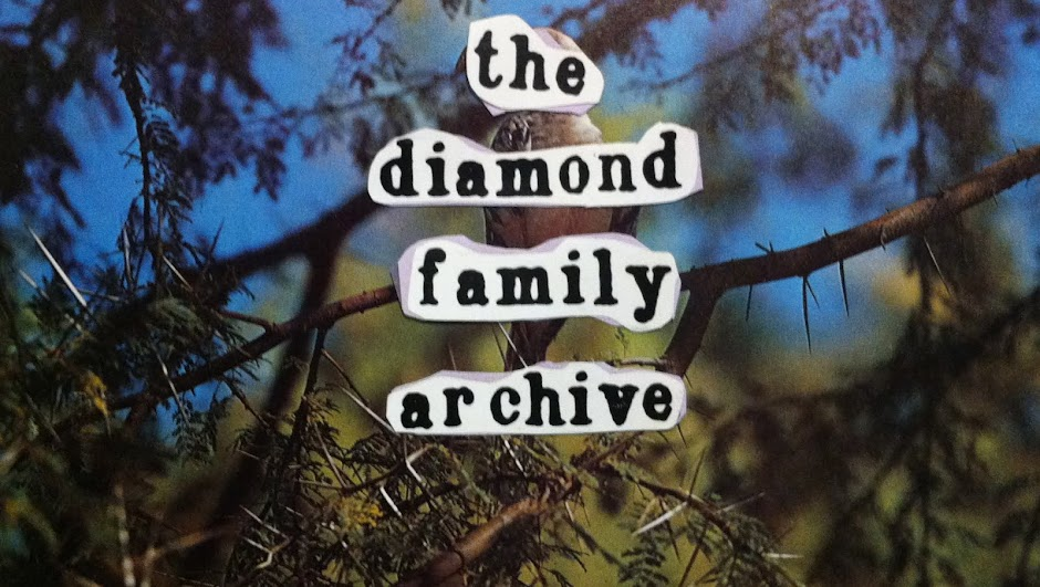 The Diamond Family Archive