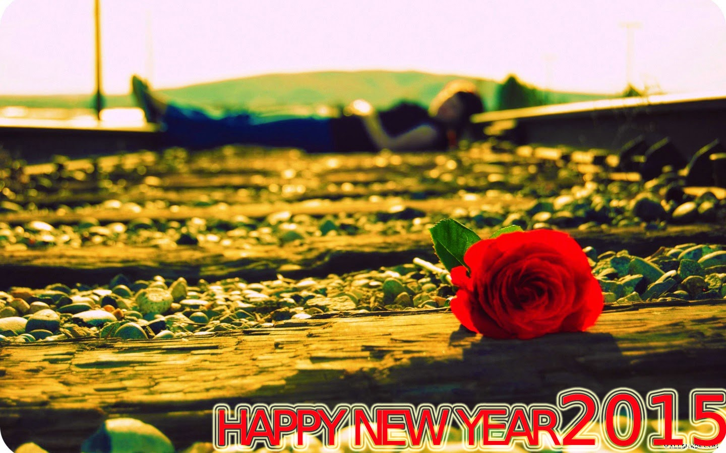 Latest Beautiful Happy New Year 2015 Rose Images– Download Wallpapers