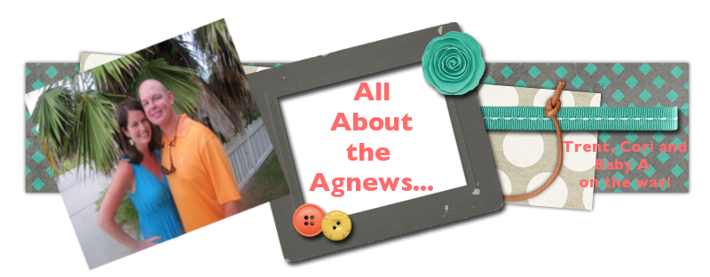 All About the Agnews