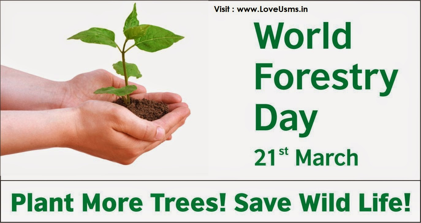 World Forestry Day - 21 March  IMAGES, GIF, ANIMATED GIF, WALLPAPER, STICKER FOR WHATSAPP & FACEBOOK