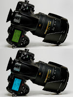 Spec of the Nikon D800