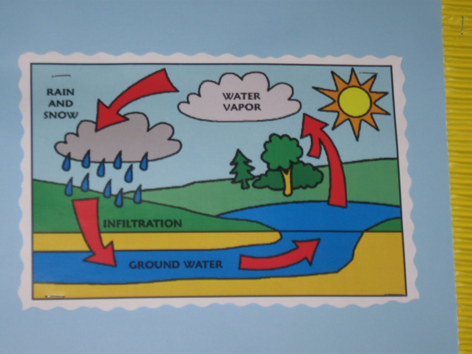 The Water Cycle | Millfield L.E.A.D Academy: Key Stage 2