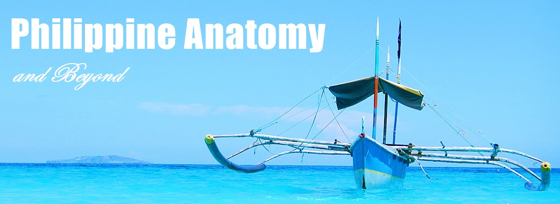 Philippine Anatomy and Beyond