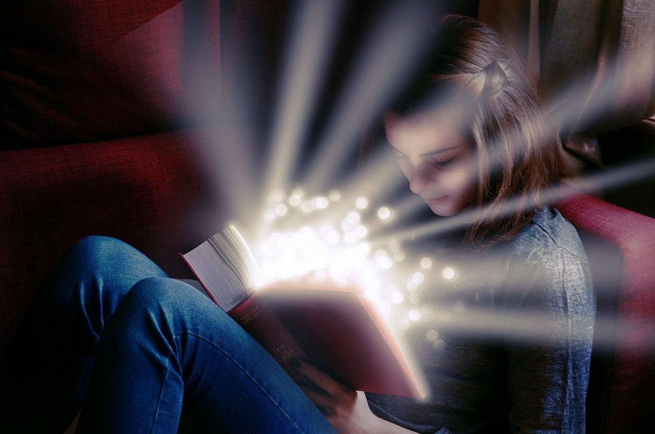 Meine ♥-Buchhandlung - <br>Der kleine Bücherheldt