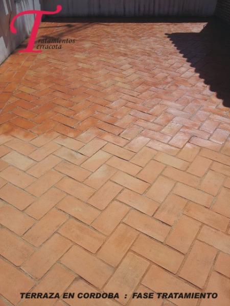Tratamientos terracota trabajo de eliminaci n de moho en - Suelos de barro ...