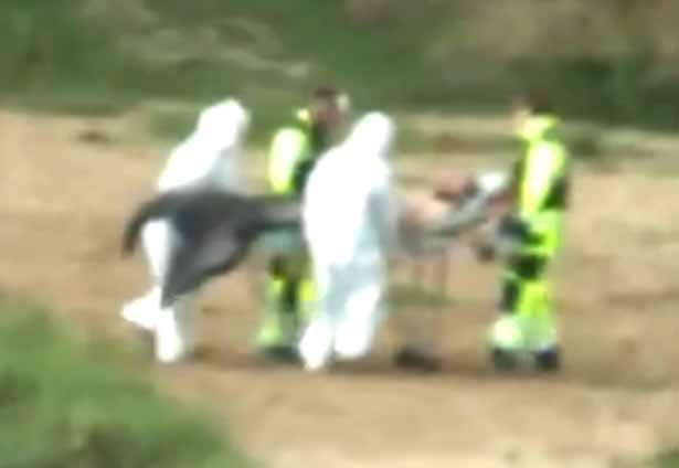 Merman was caught by men in biohazard suits in Poland