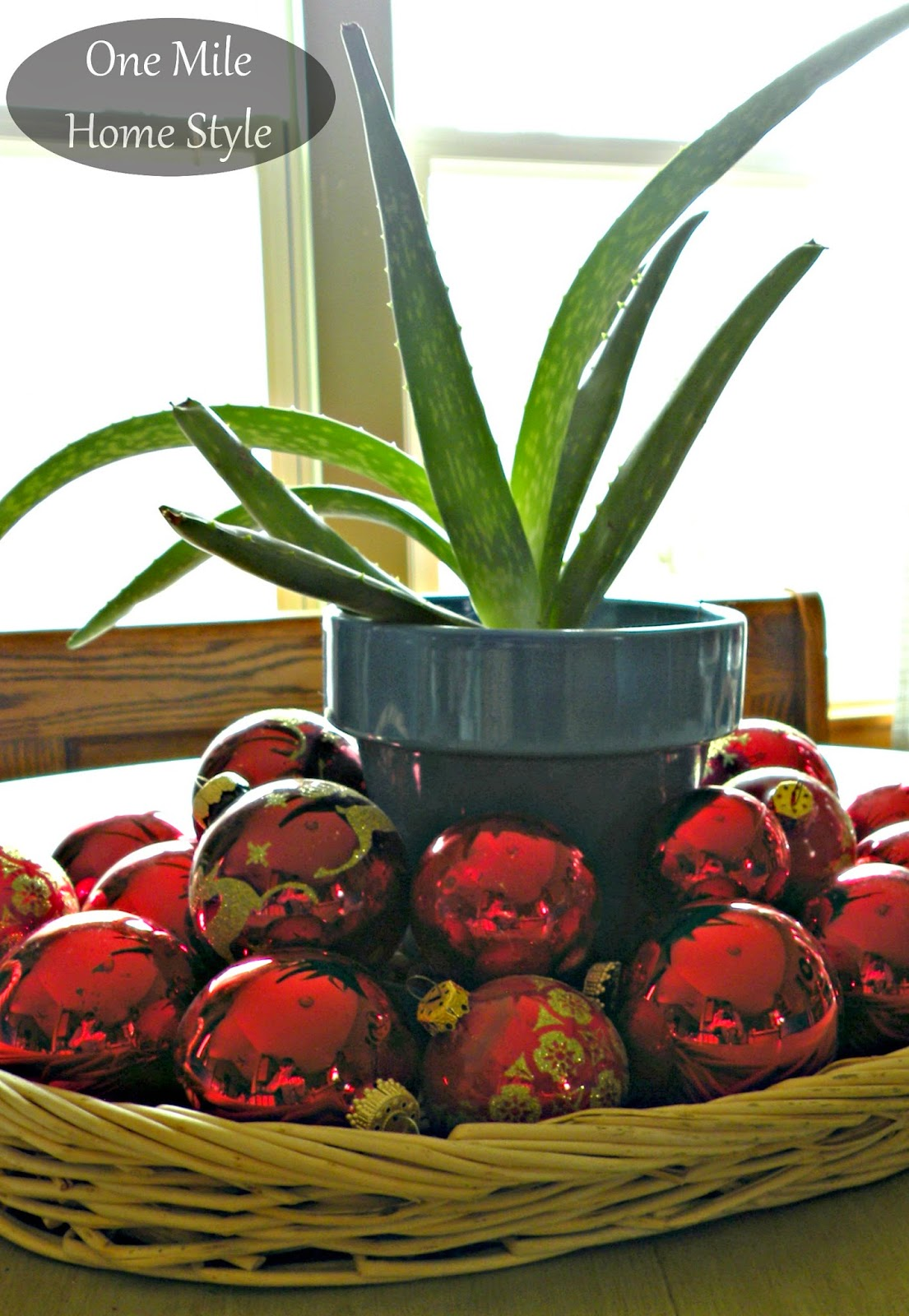 Red Christmas Ornaments surrounding aloe plant - tabletop Christmas decor
