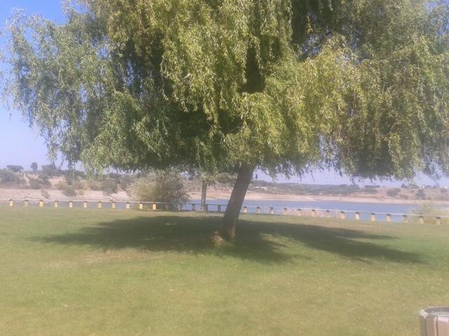 Zona de Sombra no Parque Infantil