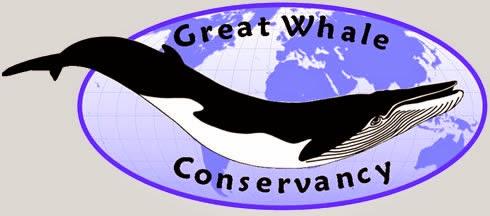 Salvar a las ballenas