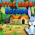 Little Rabbit Escape
