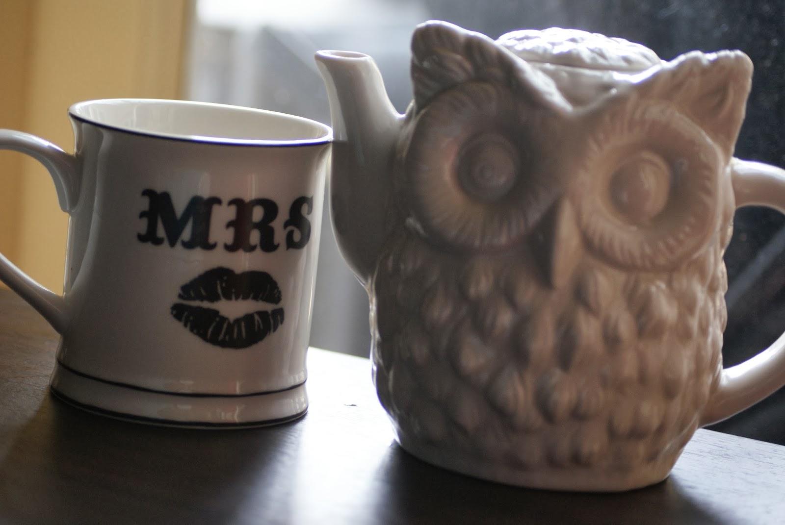 Owl Tea Pot and Mrs Mug