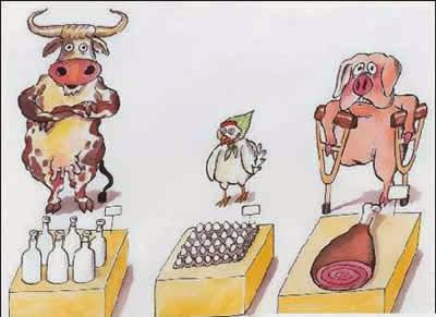gambar kartun binatang lucu