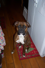 "Dozer...the ""baby"" of the family!"