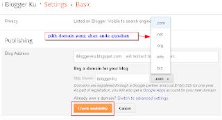 domain-setting