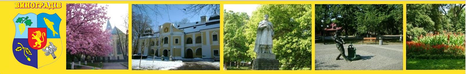 Виноградівська міська рада