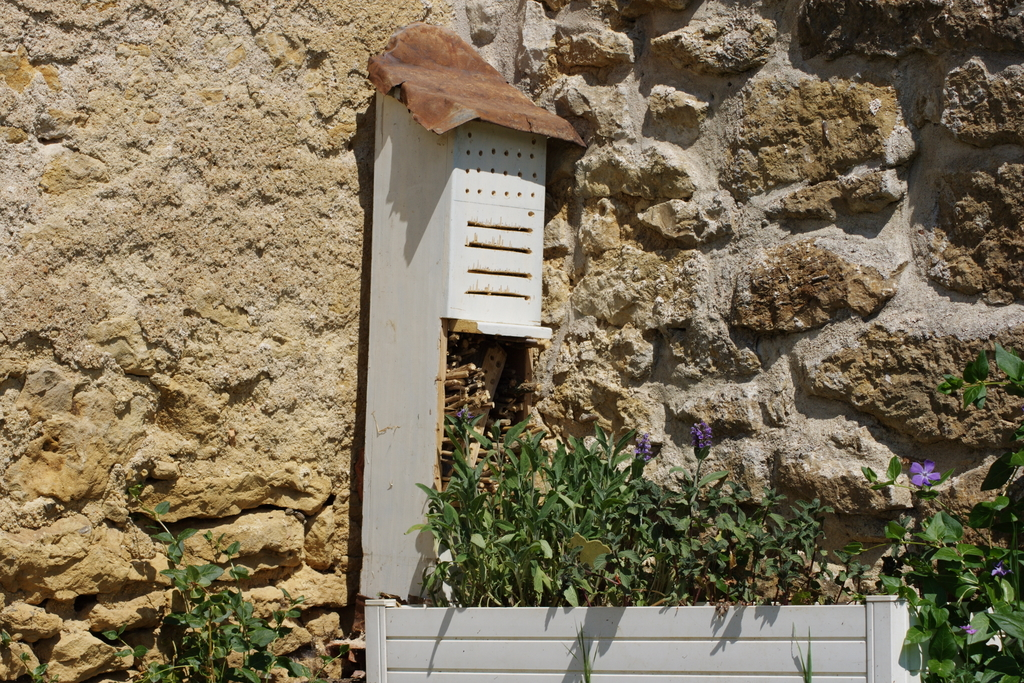 la petite maison dans la campagne immeuble insectes. Black Bedroom Furniture Sets. Home Design Ideas