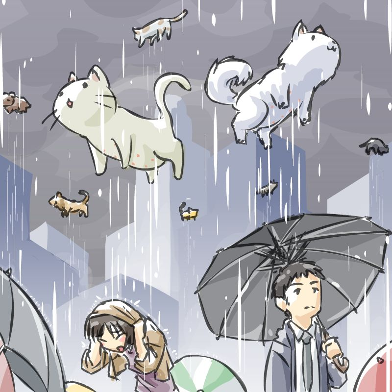 Everyday Idioms Raining Cats And Dogs