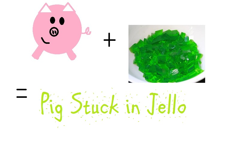 Pig Stuck in Jello