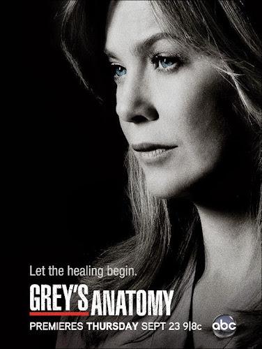 Grey's Anatomy Temporada 10 (HDTV Ingles Subtitulada) (2013)