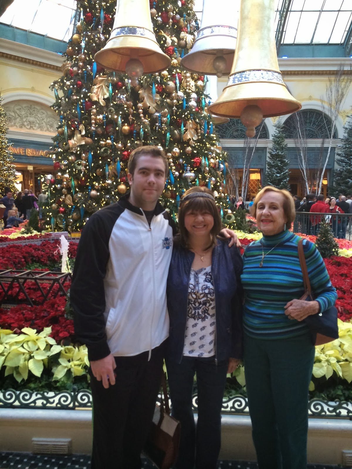 the first group of photos is from december 26th with my family during the crowded daytime hours of the bellagio conservatory - Las Vegas Christmas 2014