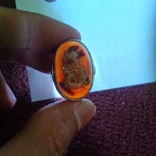Batu Mustika Buto Singa Prana