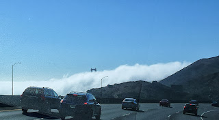 Fog bank with Golden Gate Bridge coming through the fog on top.