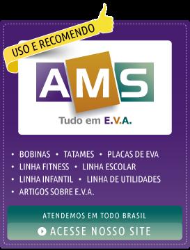 AMS E.V.A