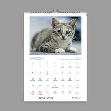 Kup charytatywny kalendarz 2017