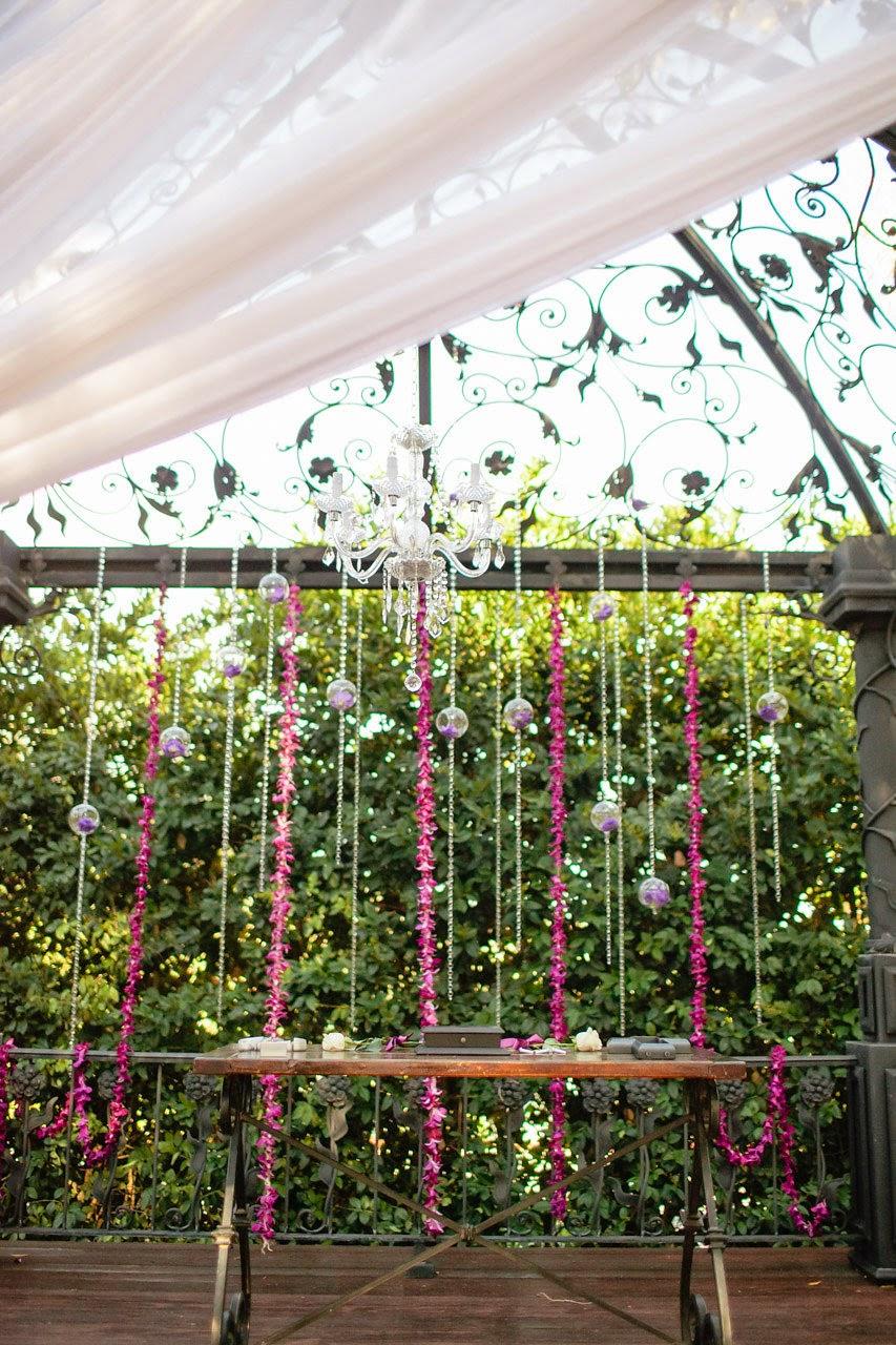 Irises Designs 8 3 13 Emily Gonzalez Serendipity Gardens