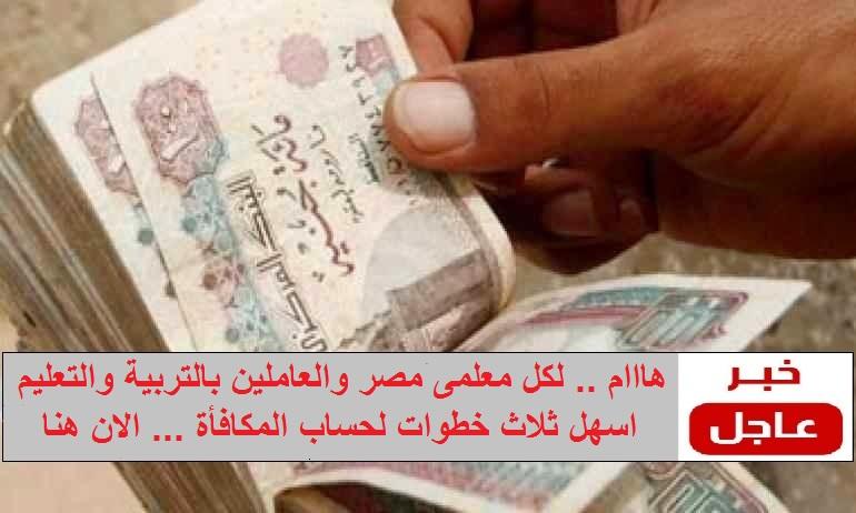 """اسهل ثلاث خطوات لحساب """" المكافأة """" لكل معلمى مصر والعاملين بالتربية والتعليم"""