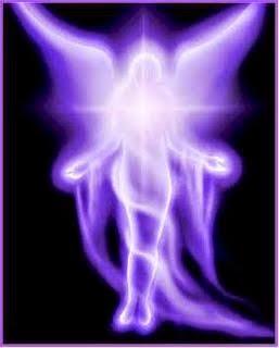 Finca Despertares - Llama Violeta