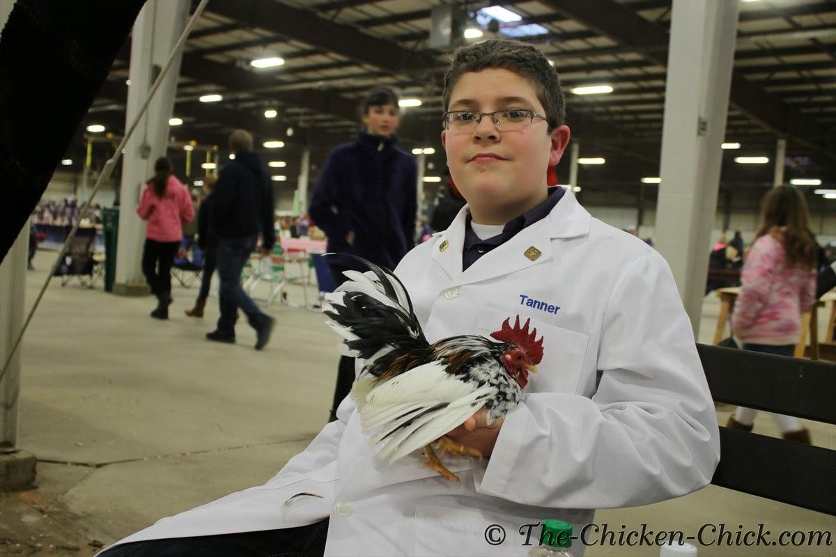Junior exhibitor with his Serama cockerel