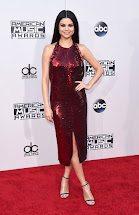 Selena Gomez American Music Awards Red Carpet
