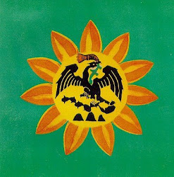Aguila Solar-MORENA