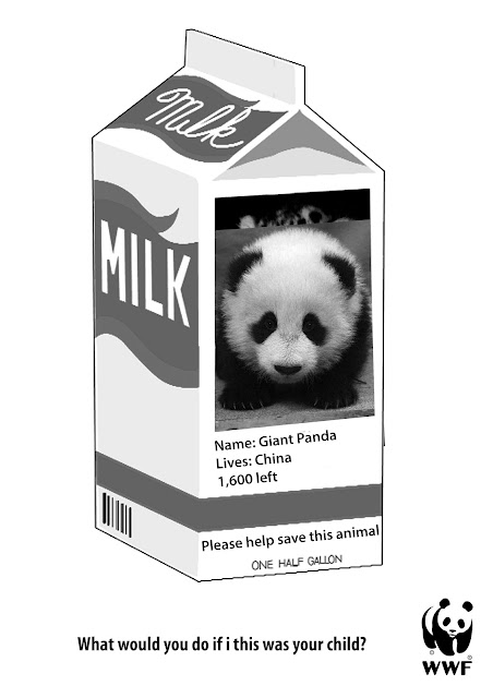 milk carton missing person template the milk carton missing
