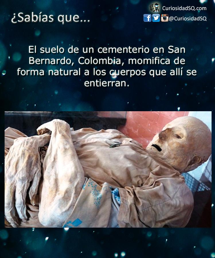 Sab as que el suelo de un cementerio colombiano que for Como se creo el suelo