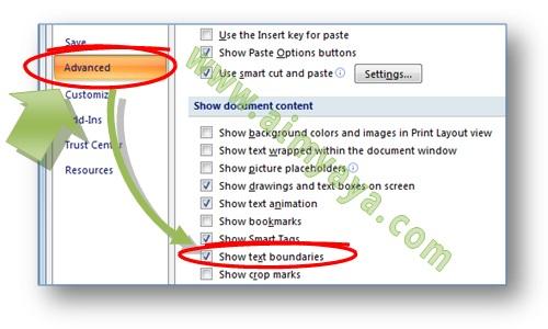 Gambar: cara mengatur setting word options untuk mengatur tampilan text boundaries di microsoft word 2007