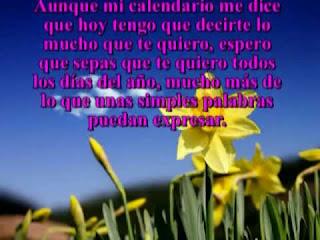 Frases De Amor: Aunque Mi Calendario Me Dice