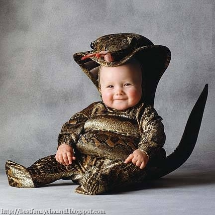 Baby snake..