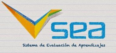 Evaluación en línea
