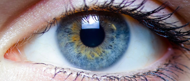 retinal prosthetic
