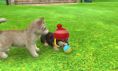 Nintendogs + Cats 3D Screenshots.html