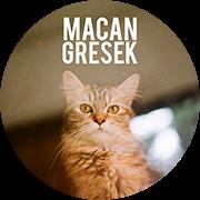 macan gresek