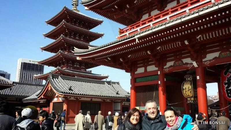 El Tim Bonsai El Tim En Japon Visita Al Barrio De