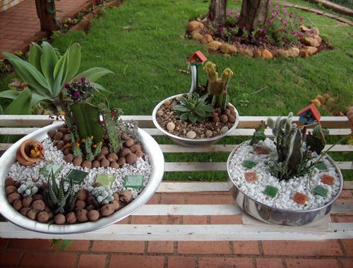 vida suculenta quer aprender a fazer um mini jardim de plantas suculentas. Black Bedroom Furniture Sets. Home Design Ideas