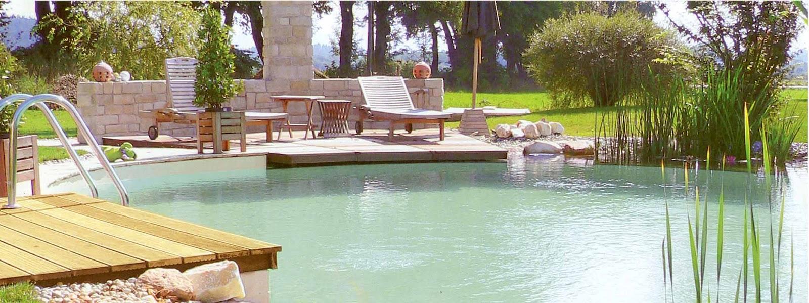 Crea tu jard n piscinas naturales o lagos artificiales for Piscinas de jardin