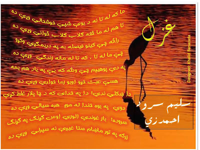 Pashto poetry pashto poet Saleem Sarwar ahmedzai